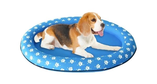 Nafukovací lehátko pro psy