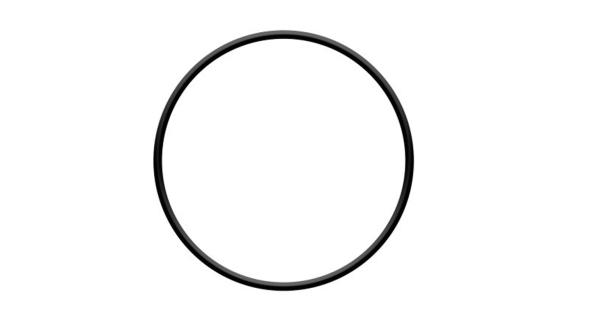O-kroužek hlavy filtrace ProStar 4 a ProStar 6