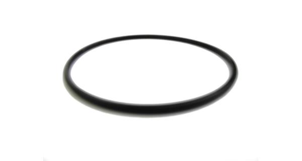 Těsnění víka filtrační nádoby Prostar